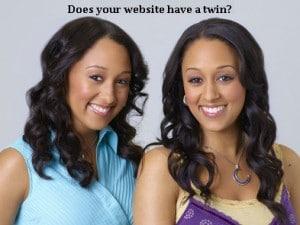 Cheshire SEO twin image