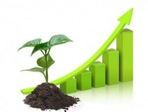 SEO Long Term Growth